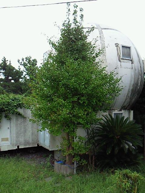 房総の球形住宅02