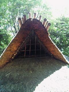 遺跡庭園 縄文の村11