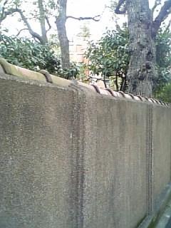 旧安田庭園&両国公会堂05